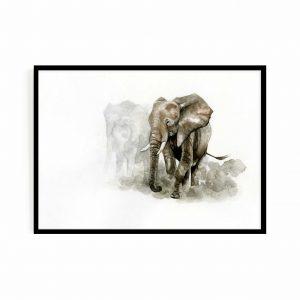 The migrations (elephants)