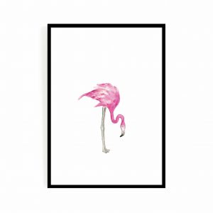 Flamingo Middle
